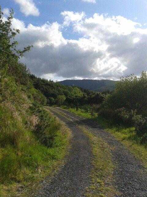 Summer Ireland