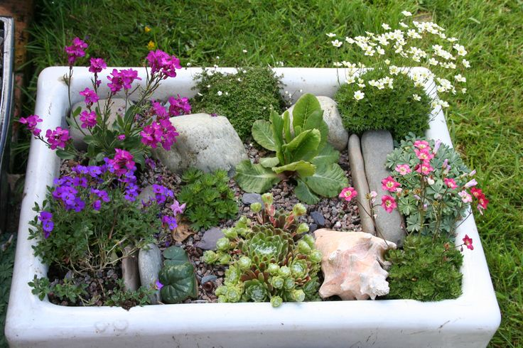 Alpine garden in belfast sink...what a neat idea for an old sink.