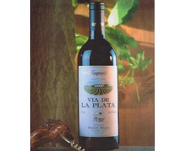 Cava-Vino || Vino tinto ROBLE Tempranillo + Merlot (Crianza)    Vía de la Plata Tinto Roble. Este vino tinto sigue la trayectoria de la casa- finura, cuerpo, aroma, taninos integrados y un posgusto amplio y persistente. Elaborado con Tempranillo y Merlot.  Caja de 6 unidades.