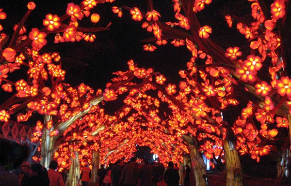 17 best ideas about lantern festival on pinterest Missouri botanical garden lantern festival