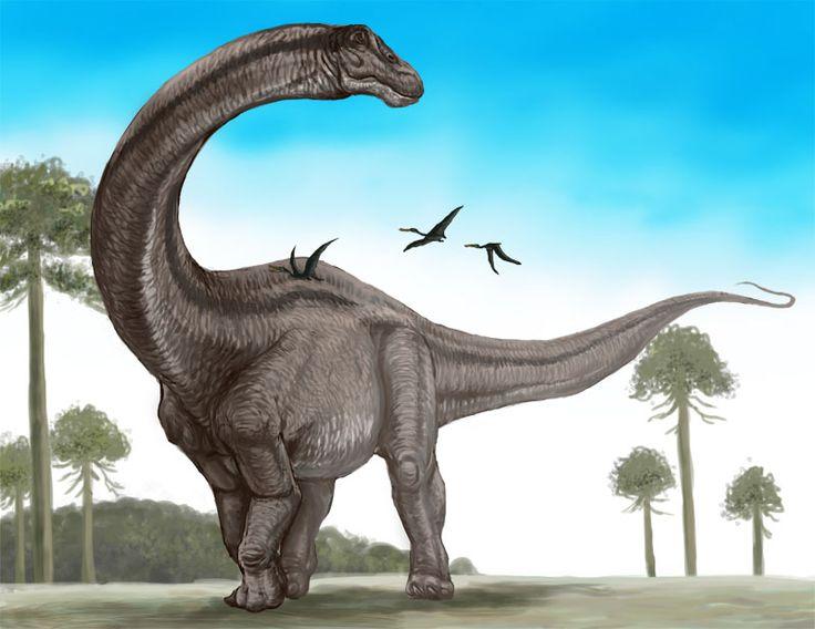 50 best Dinosauria 1 : Supersaurus images on Pinterest ... Extinct Species Dinosaurs