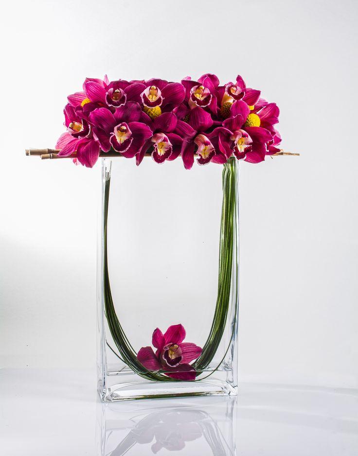 orchids,cymbidium, pink, starbright, starbrightnyc