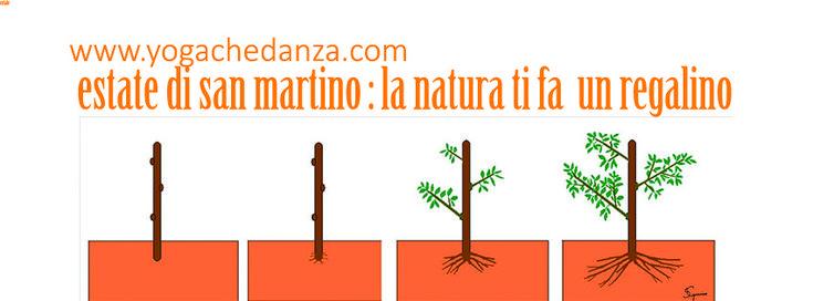 La forza della Natura si manifesta: 11 Novembre, Estate San Martino