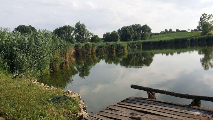 Horgásztó Bakonyszücs