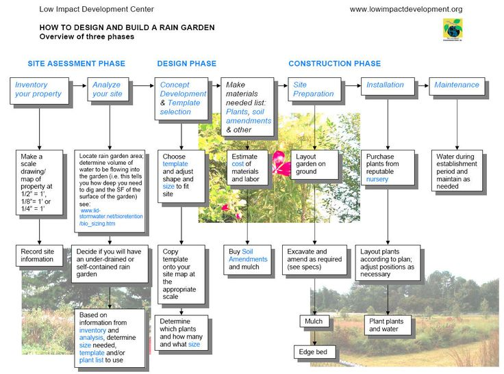 Garden Design Template rain garden design templates - rain garden process chart jpeg