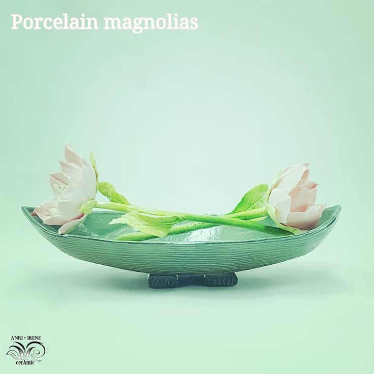 105 отметок «Нравится», 1 комментариев — Fine porcelain Anri Irene (@anri.irene_porcelain.art) в Instagram: «Bye bye my dear magnolias, bring happiness and luck to your new owner! ❤️ Porcelain magnolias,…»