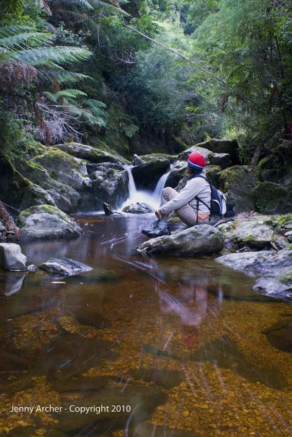 Lucy Creek, Corinna, Tarkine Wilderness, #Tasmania #Australia More: http://discoverthetarkine.com.au/ | The Tarkine Wilderness is threatened. Protest on Pinterest: pinterest.com/tarkine #SaveTarkine
