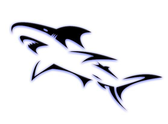 Blue highlight...tribal shark tattoos - Yahoo! Search Results