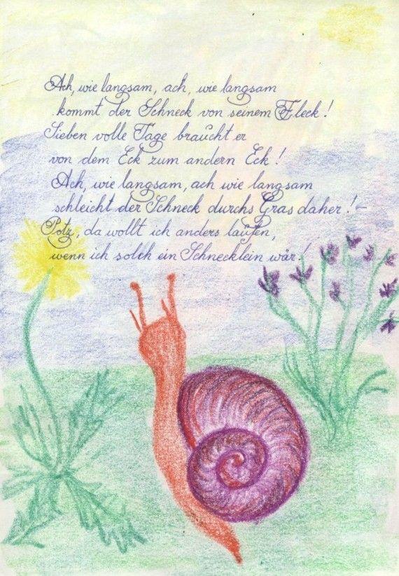 Waldorf ~ 4th grade ~ Human & Animal ~ Snail ~ main lesson book