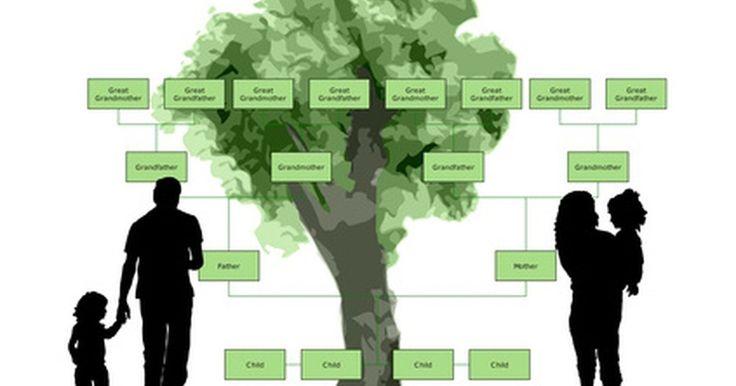 Cómo crear un árbol genealógico en Microsoft. Crea un árbol genealógico en tu computadora usando las plantillas de Microsoft PowerPoint, disponibles en el software y en el sitio de Internet de Microsoft. Revisa la galería de plantillas y selecciona la que mejor represente el tipo de árbol que quieras crear. Personaliza el árbol familiar escribiendo sobre el texto por defecto y agregando los ...