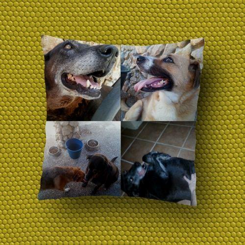 Cojín de 4 imágenes