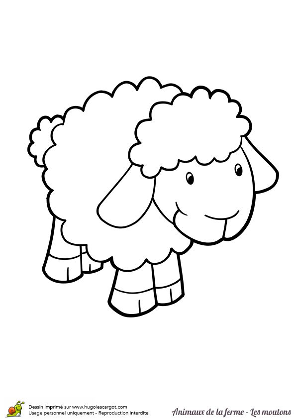Coloriage d'un bébé mouton tout mignon