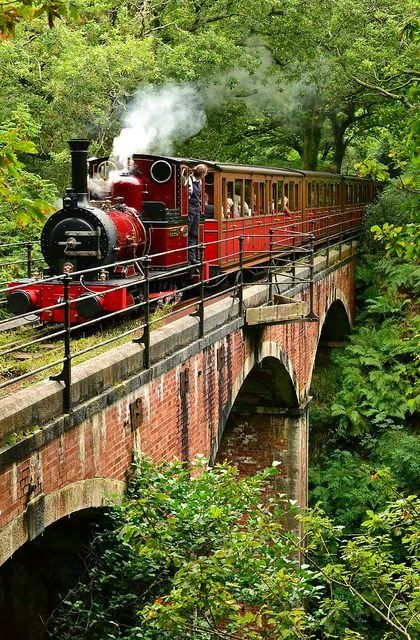 ratustuff:  ratustuff  Talyllyn Railway, Wales, UK