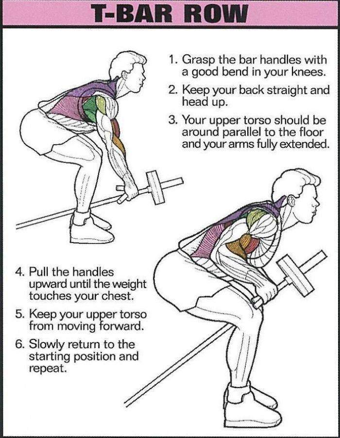 T-Bar Row - Healthy Fitness Back Training Exercise Core Shoulder