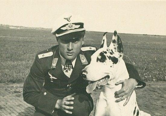 17 Best Images About Dogs Of Wwii On Pinterest Hokkaido Soldiers And Training