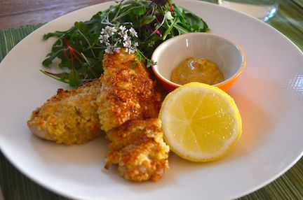 Crunch Quinoa Crusted Chicken Strips from The Family Books By Laurie David