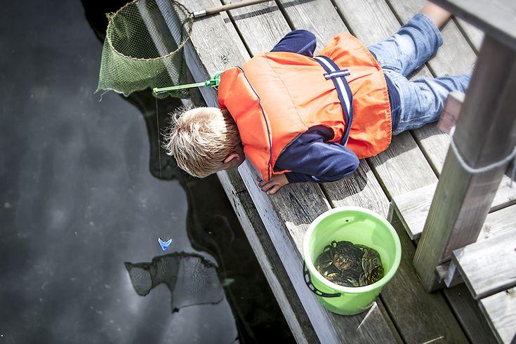 Krabbfiske – Barnens favorit!