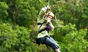 Groupon - $ 59 for a Zipline Adventure for Two from Lark Valley Zip Lines (Up to $118 Value) in Halbert. Groupon deal price: $59