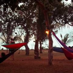Lightweight, easy to carry, easy to setup, easy to pack, the parachute hammock created by Ticket To The Moon is available in 1000's of styles on www.ticketothemoon.com. As manufacturer, we ship worldwide and within a day your customized hammock gear for 20 USD (Free from 150 USD worth of purchase)...allow one week to be able to relax in your hammock!