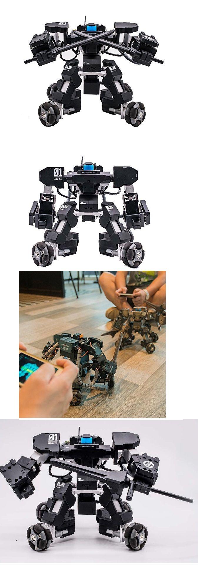 Remote Control Combat Robots   Craze Trend