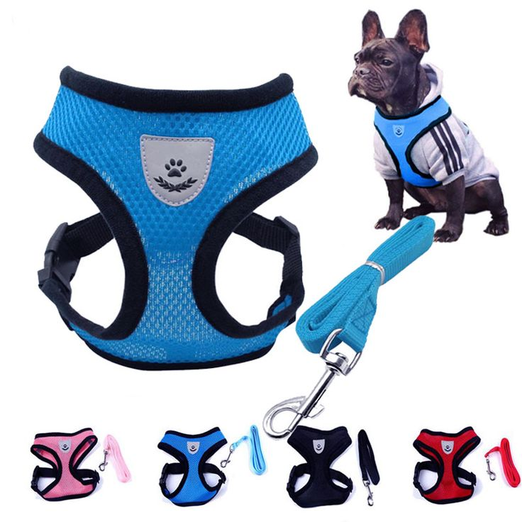 Cute Small Nylon Dog Harness Cat Pet Harness set Chihuahua Yorkie Pet dog Accessories Dog Lead Pet Shop Supplies Pet Dog Collars //Price: $9.95 & FREE Shipping //     #hashtag4