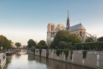 After-Hours Tour of Notre-Dame Cathedral Towers - Paris | Viator