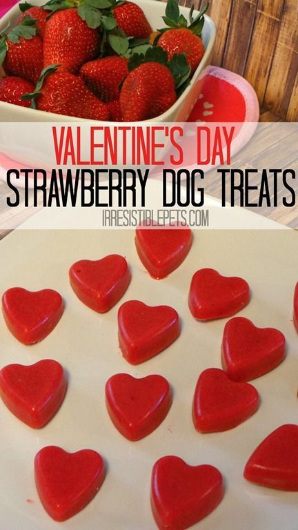 Show your dog some love  with fresh strawberry hearts for Valentine's Day...