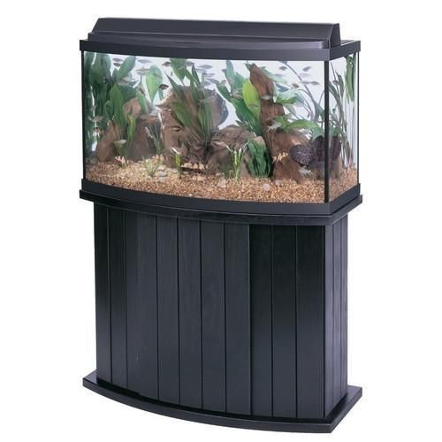 All-Glass Aquarium Bow Front Stand 46bf