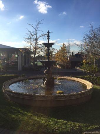 Cette photo est prise d'une fontaine. La fontaine est entourée de magnifiques rosiers. La fontaine est vieille et très importante pour l'histoire de St Catherines. La fontaine est située dans la centre de l'école en face de la Maison Sherren. Beaucoup de photos des étudiants sont pris en face de la fontaine.
