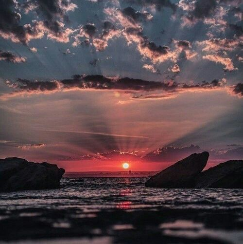#sunset #beautiful #nature #wild #calm #love #aesthetic #sky #wallpaper  https://weheartit.com/entry/299511273