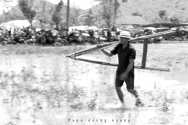 Joki Barapan Kebo Indonesia