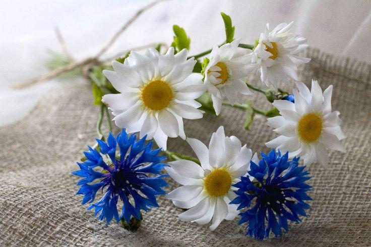 Новый год, картинки цветы васильки с ромашками