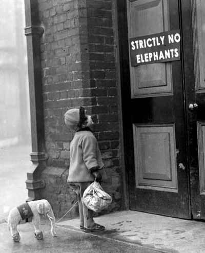 """January 1927: A young visitor and her toy elephant finds that the elephant house at London Zoo is closed for their winter holidays. (The original inscription says """"House Closed"""")"""