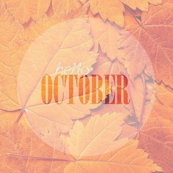 Well hellooooooo October! Will you suprise us this month ?  We don't know about you guys but the Maralex team  is soooo excited about halloween!! . . . . #hellooctober #autumn #fall #2016 #halloween #pumpkin #instagood #instadaily #instamood #instacool #cool #love #photooftheday #pictoftheday #happy #beautiful #fun #igers #nature