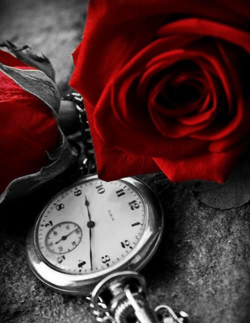 #Clocks and #flowers ... A deep meaning to love... ❤️ Aline :))
