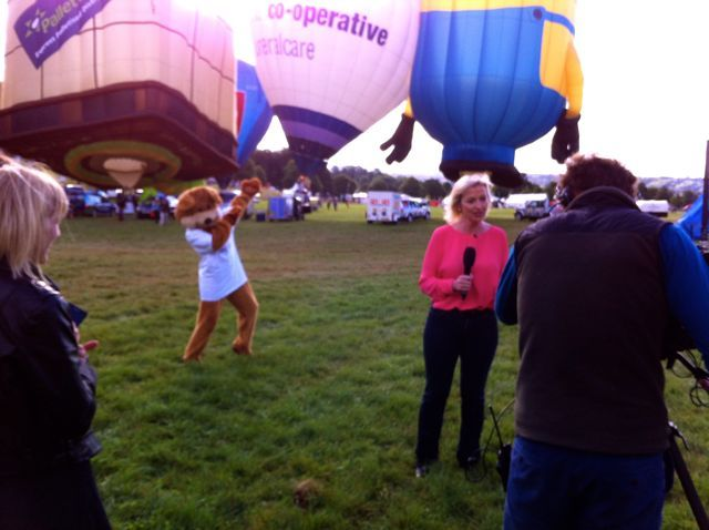 Bailey Bear on BBC Breakfast with Carol Kirkwood, our favourite weather presenter