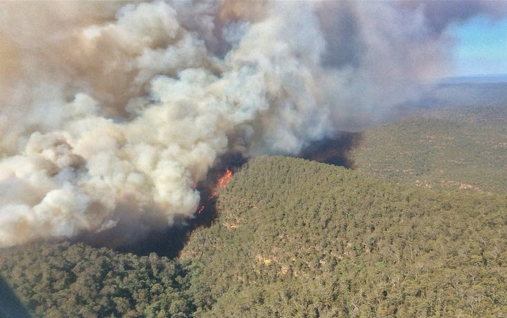 Theres been significant rain across eastern NSW with more than 90mm falling near the 695 fire burning in the Wollemi National Park and Putty State Forest since January 28. This fire is now contained. It is important to remain vigilant & report unattended fires to 000. #NSWRFSpic.twitter.com/YzTNG4cIBk