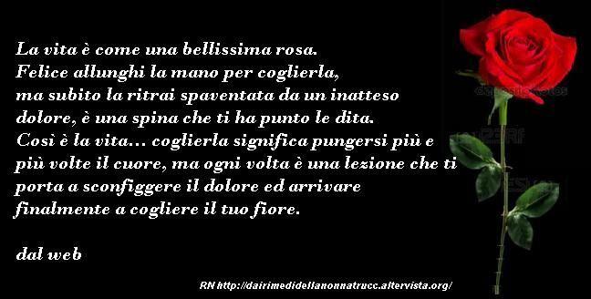 Immagine Frase La Vita è Come Una Bellissima Rosa Dai Rimedi Della