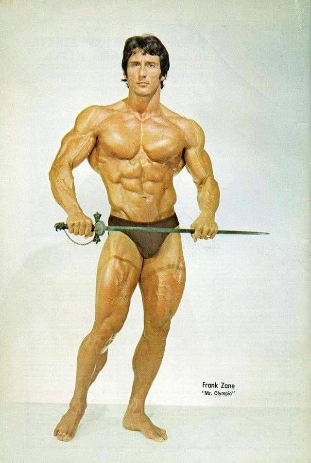 frank zane the workouts pdf