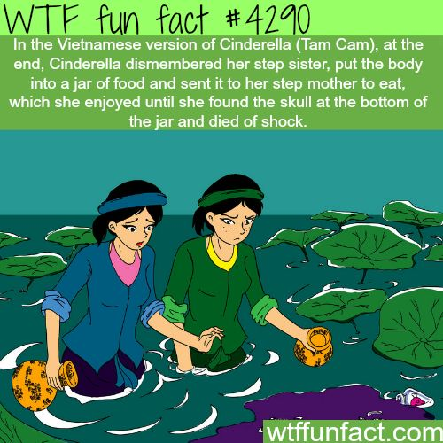 The Vietnamese version of Cinderella (Tam Cam) -  WTF fun facts