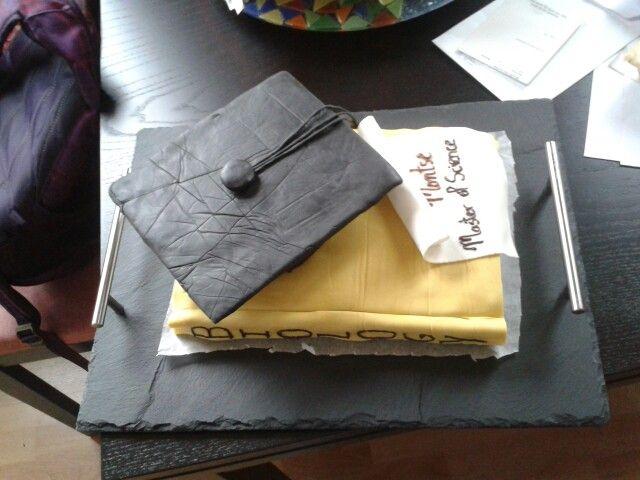 Zelf gemaakte taart voor afstudeerfeestjes. Niet moeilijk en absoluut de  moeite waard!