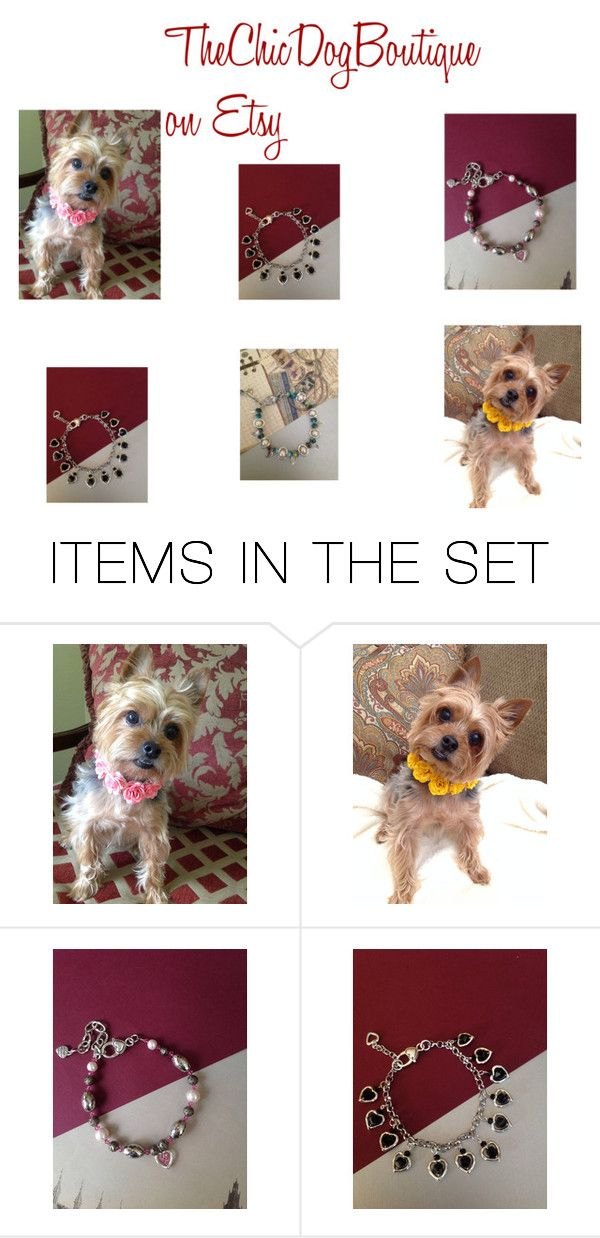"""""""the Pampered Pet"""" by artistinjewelry ❤ liked on Polyvore featuring art"""