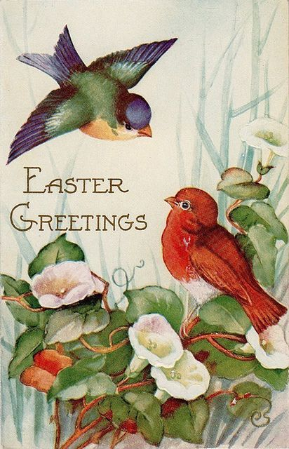 A beautiful vintage Easter postcards featuring two birds. #vintage #Easter #postcards