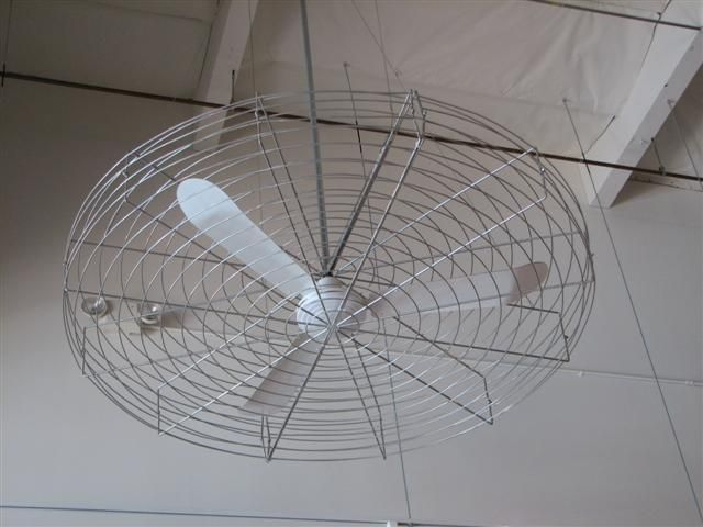 industrial ceiling fan want for new house