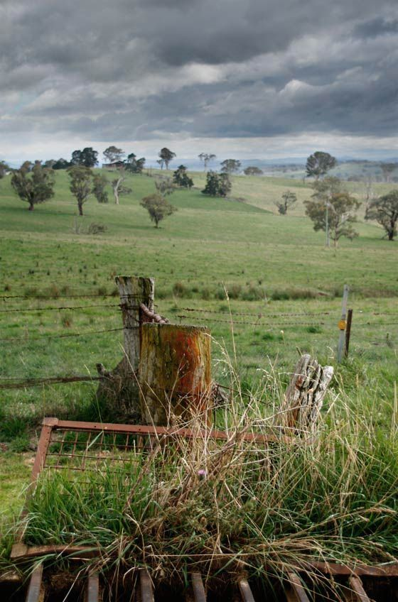 cattle grid and storm near Bathurst, NSW, Australia