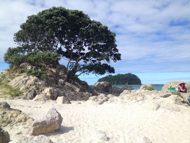 Beach in Tauranga. Most beautiful beach I have ever been too!