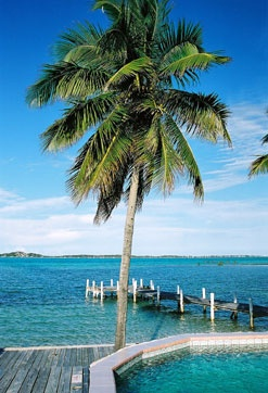 Coconut Grovegeorgetownexuma Island New Owners To Open In Jan  Called Exuma Beach Resort The Places Ive Gone Pinterest Exuma Island Beach