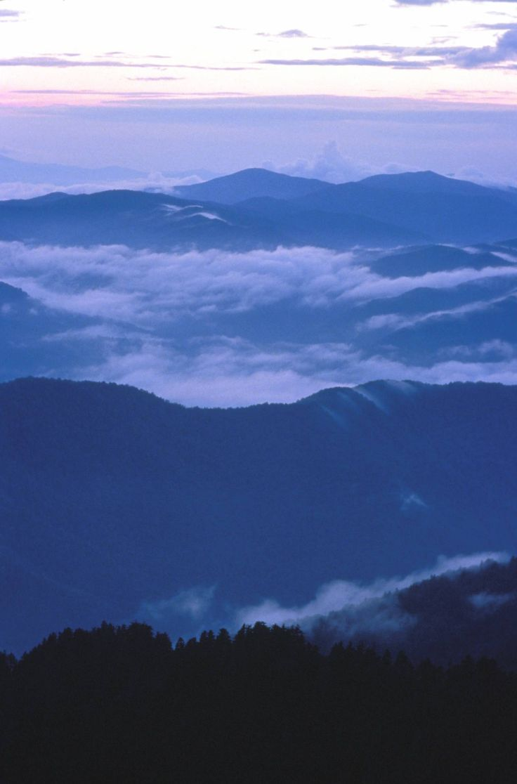Great Smokey Mountains - We went every year when I was young.  Beautiful place.