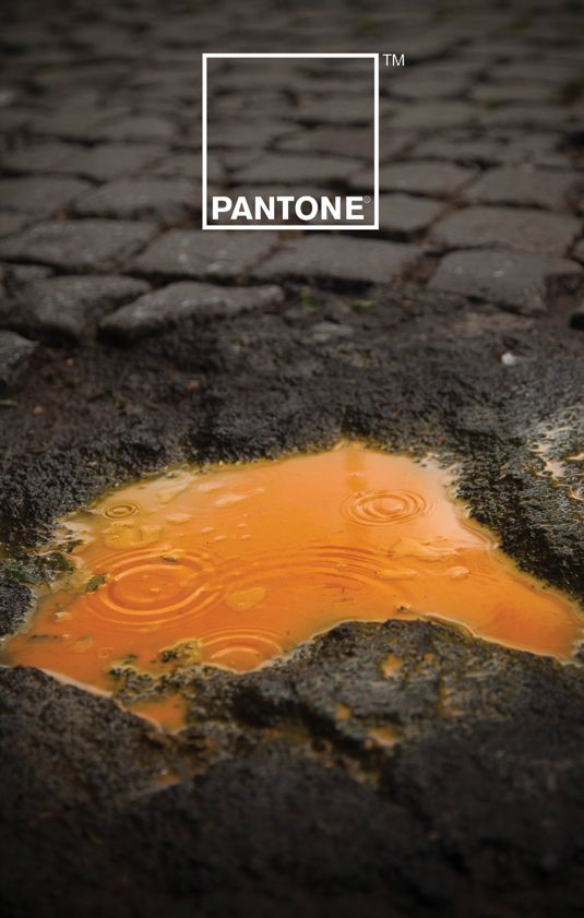 #Pantone print campaign explores the relationship between color and rain water