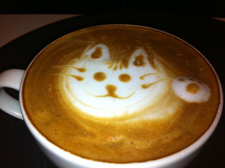 love kitty!!